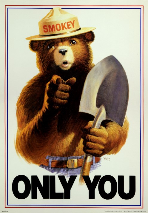"""Smokey The Bear says """"Only You"""""""