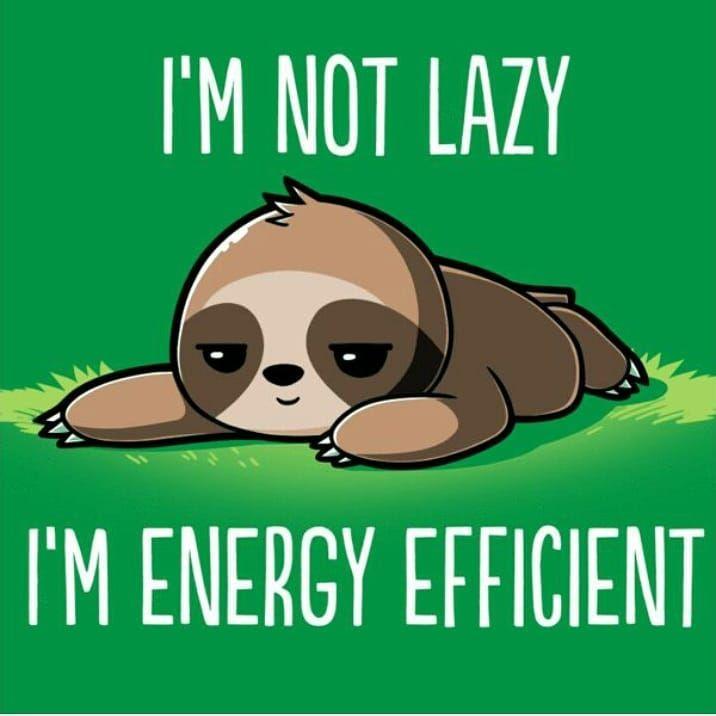 I'm not lazy, I'm energy efficient sloth