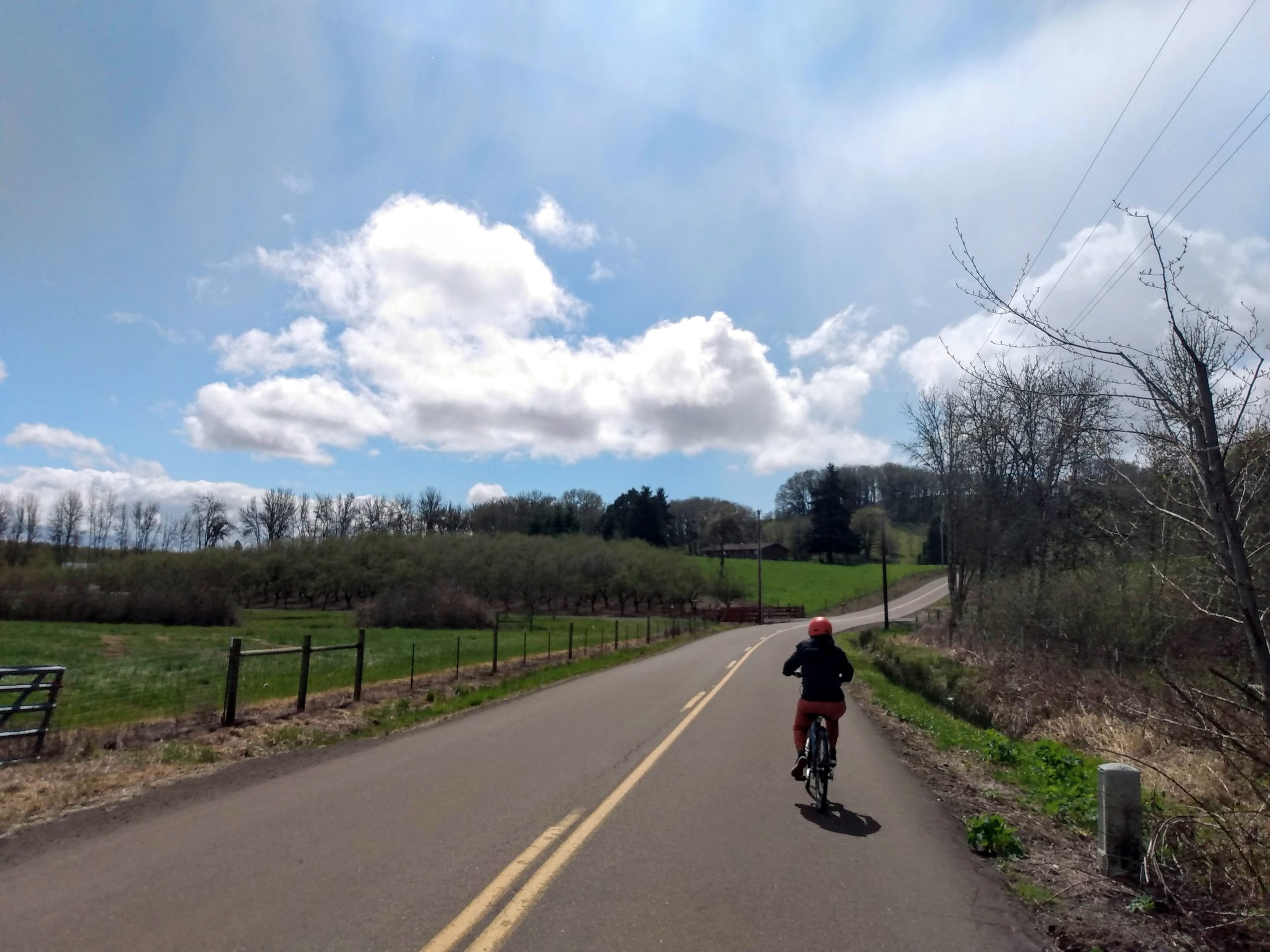 Biking on a country road