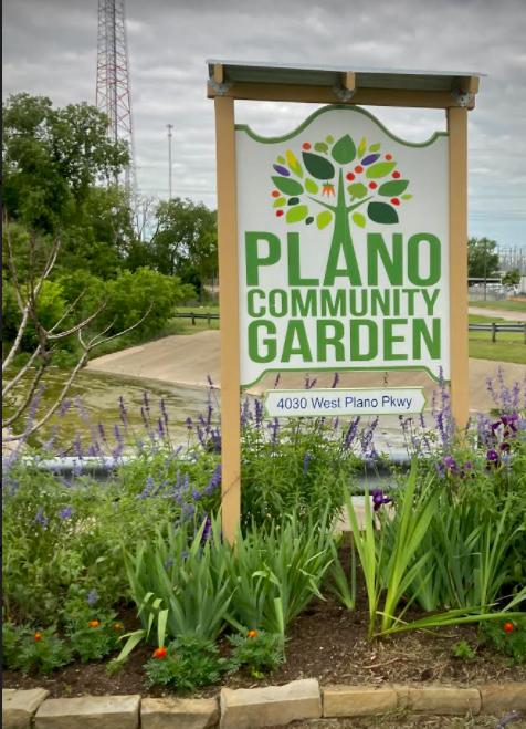 My Community's Garden