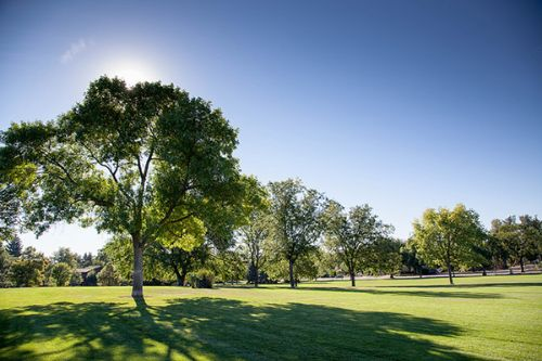 city of fort collins park