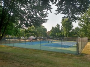 Tree canopies at tennis courts
