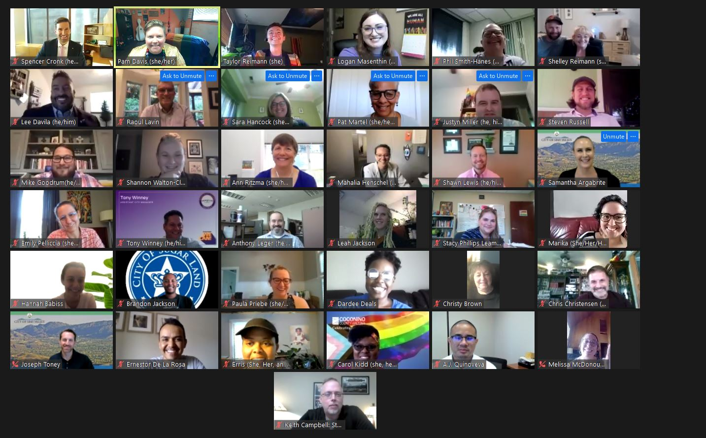Attendees at CivicPRIDE's first ever virtual Inclusion Summit