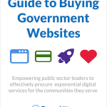 Guide to Buying Government Websites