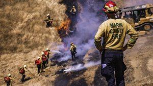 Marin Fire