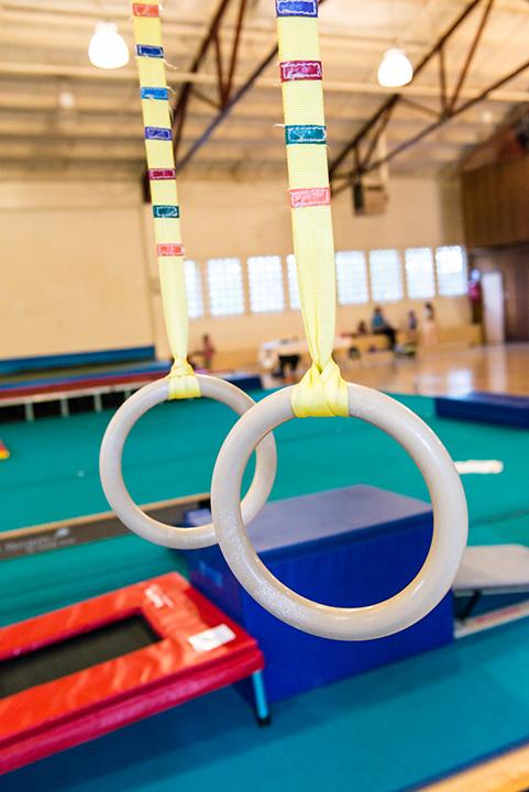 Gym Rings