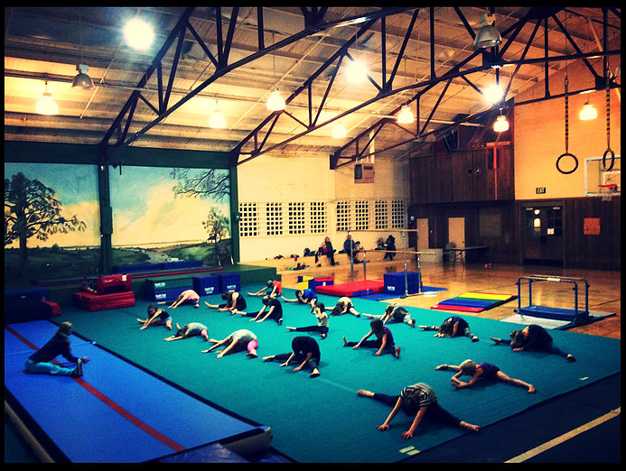 gymnastics in the Pavilion