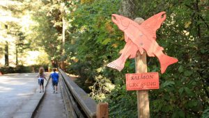 Steelhead Crossing Sign