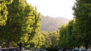 Parkade View 2