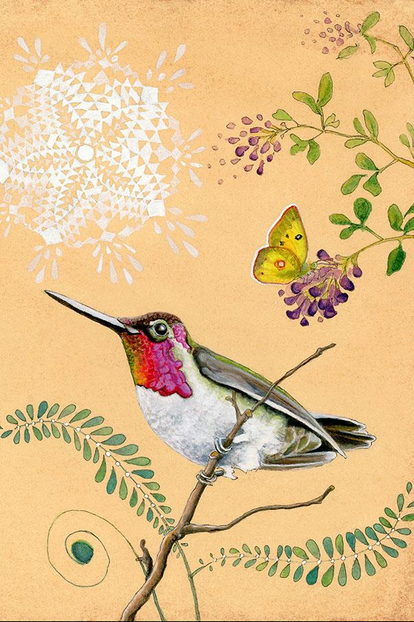 Amy Rose Moore - Hummingbird