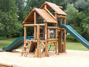 Bears Play Structure 1