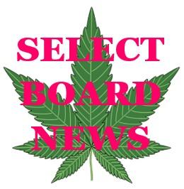 SBN cannabis leaf
