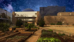 Planetarium Night Sky