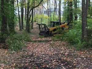 Prugh Woods