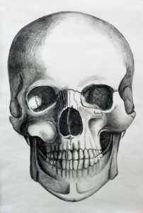 dillon artwork