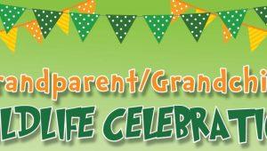 wildlife web banner