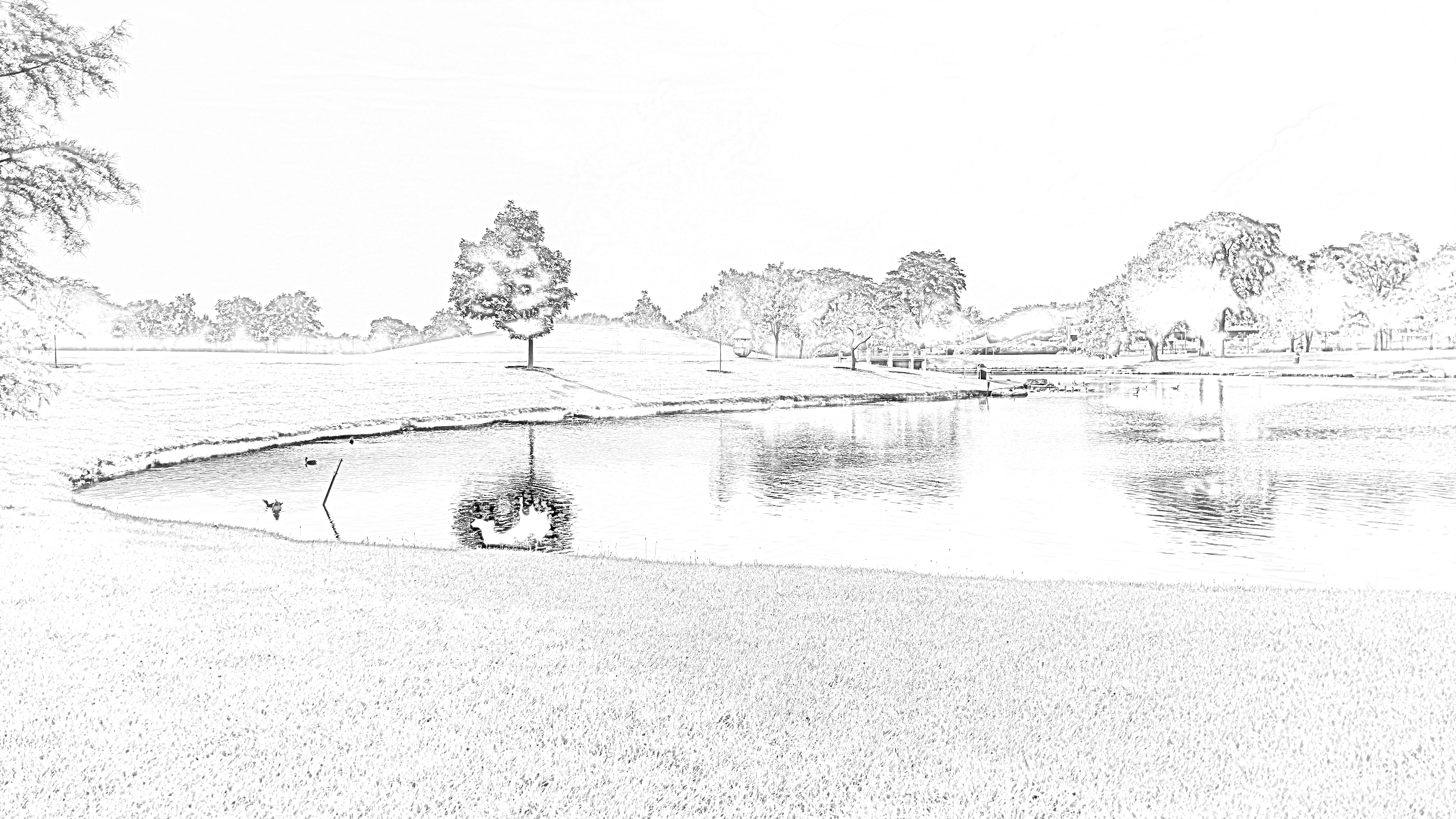 pond coloring page