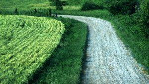 road through field