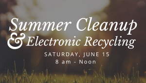 summercleanup