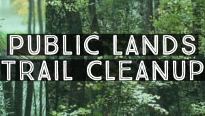 trailcleanup
