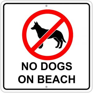 No Dogs on Beach