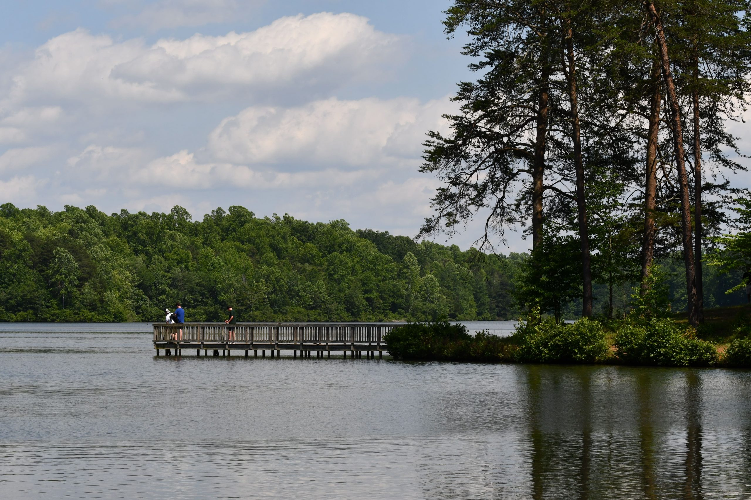 view of pier at Lake Michael Park