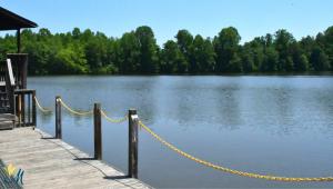 Zoom background of lake