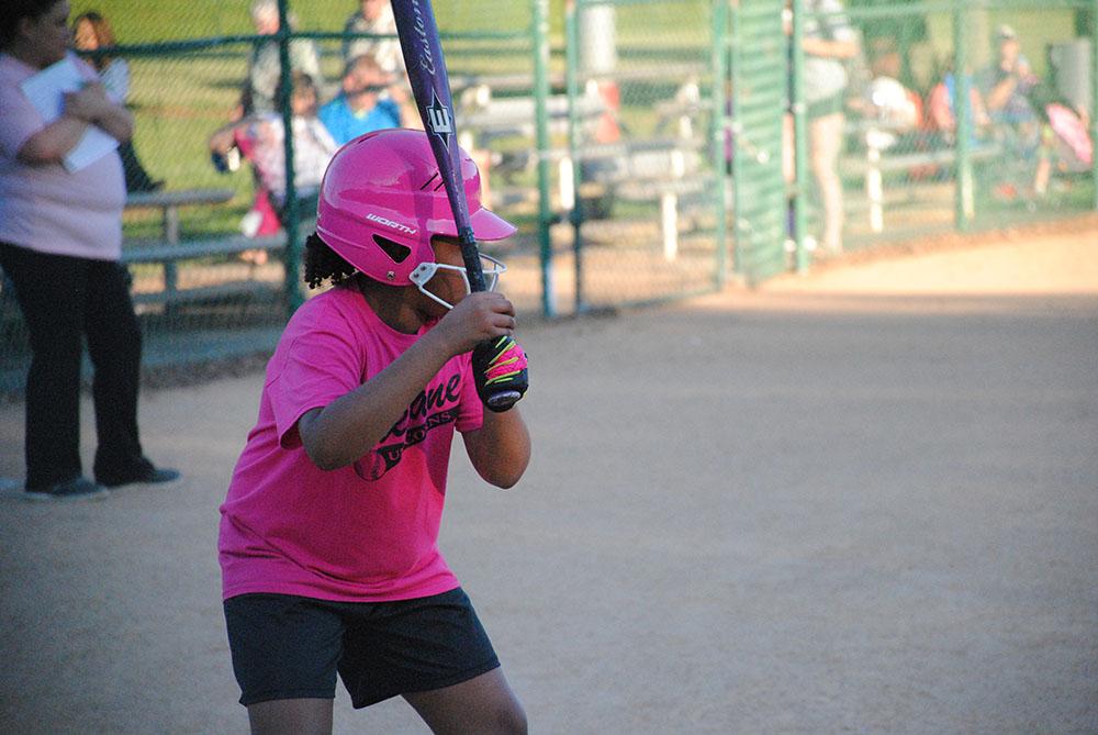 Youth Softball Batter 2