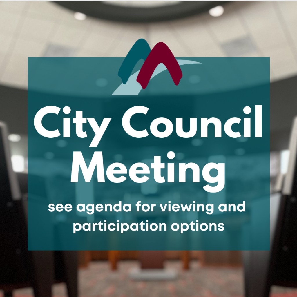 Council Meeting Announcement Flyer