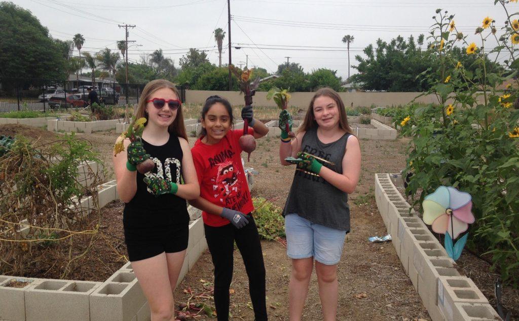 Community Garden Girl Scouts