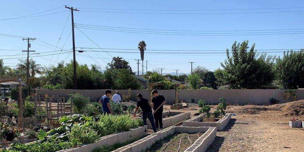 Community Garden Volunteers 1