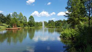 Pioneer Park Pond