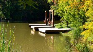 Pioneer Park Pond Docks