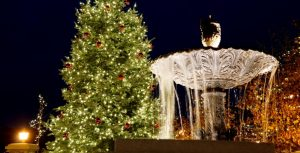 Plaza Fountain and Christmas tree
