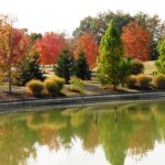 todd pond reflects fall