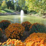 Swaim Park Fountain