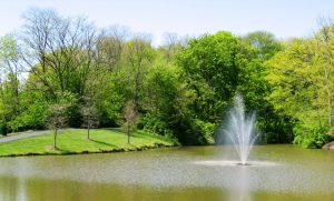 Pioneer Pond Fountain