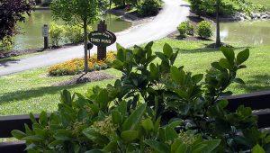 Swaim Park