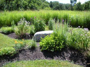Pioneer Butterfly Garden