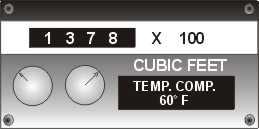 Digital gas meter