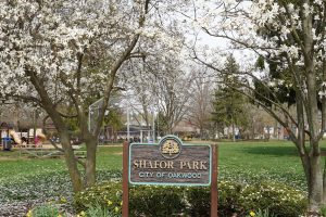 Shafor Park