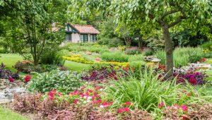 Smith Garden - Flowers