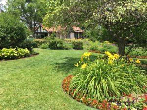 Gardens Summer 2020