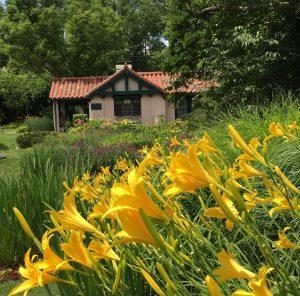 Smith Gardens Summer 2020
