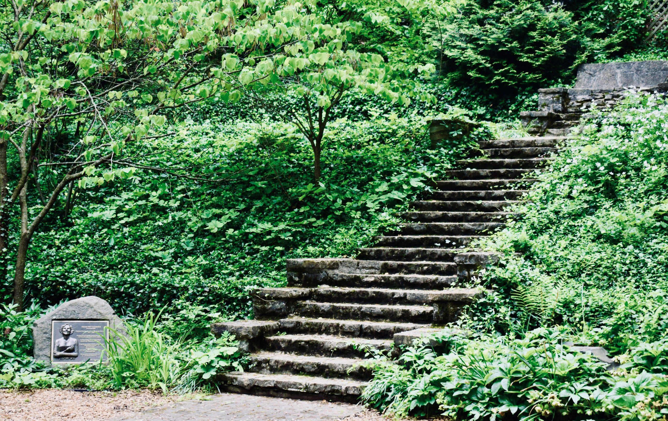 Francines Garden
