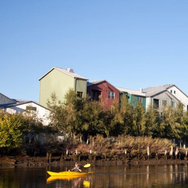 petaluma river kyack
