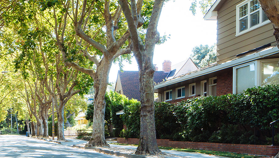photo of residential streetscape
