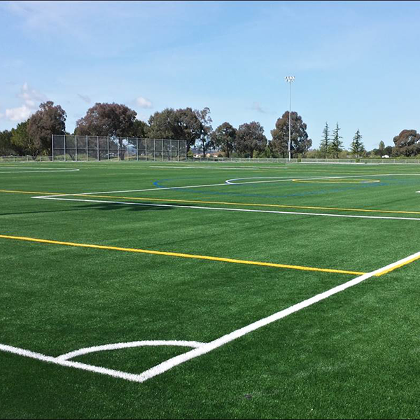 parks sports fields