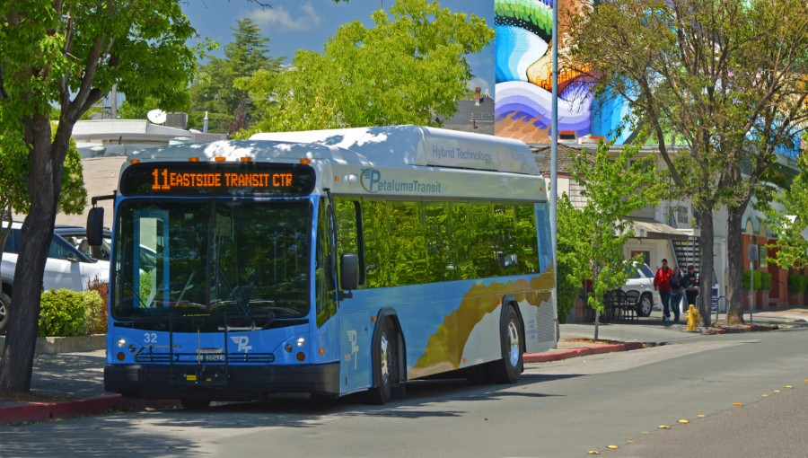 photo of petaluma transit bus