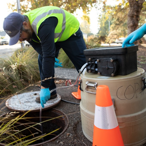 photo of sewer inspection